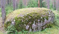 Парк Каменная гора в Санкт-Петербурге