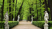 Петербург - Летний сад